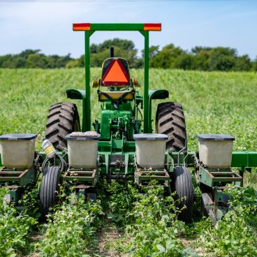 Planting soybeans into cover crop
