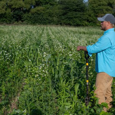 Andrew Reuschel in cover crop