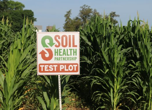 Soil Health Lessons – SHP Plot Sign