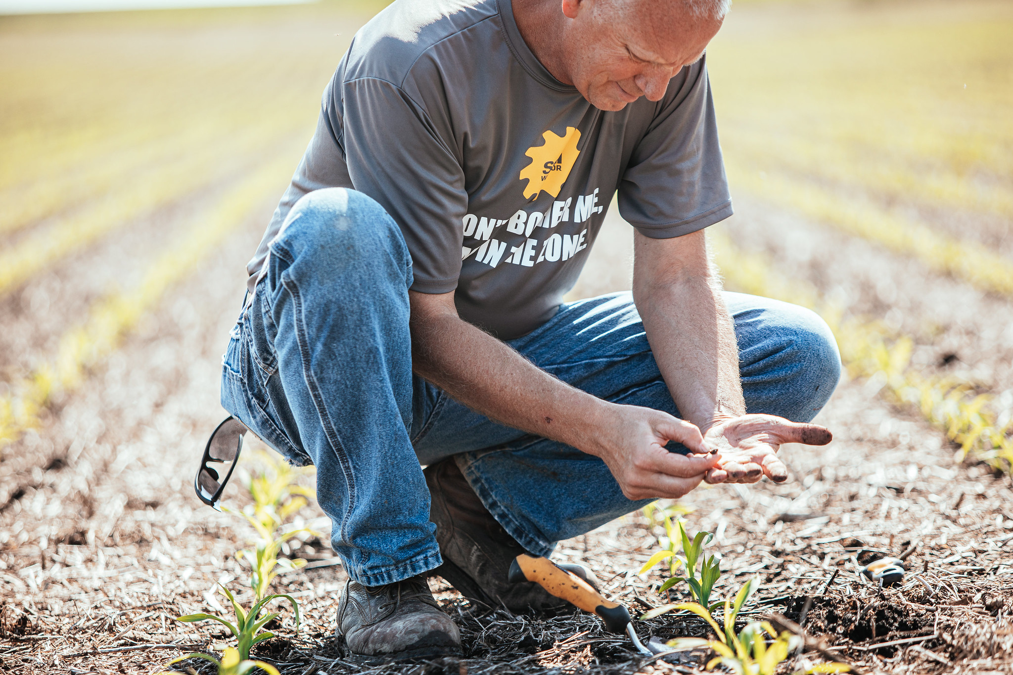 Brian Ryberg evaluating soil health