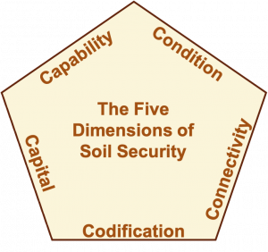 Dimensions of Soil Security
